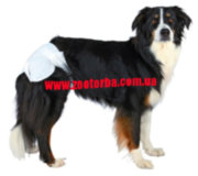 TRIXIE , Diapers , for Female , Dogs , памперсы для сук .