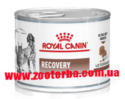 Royal Canin , RECOVERY ,  Роял Канин , Ветеринарная  , диета для собак , кошек , консерва , востановление после болезни , интенсивная терапия .